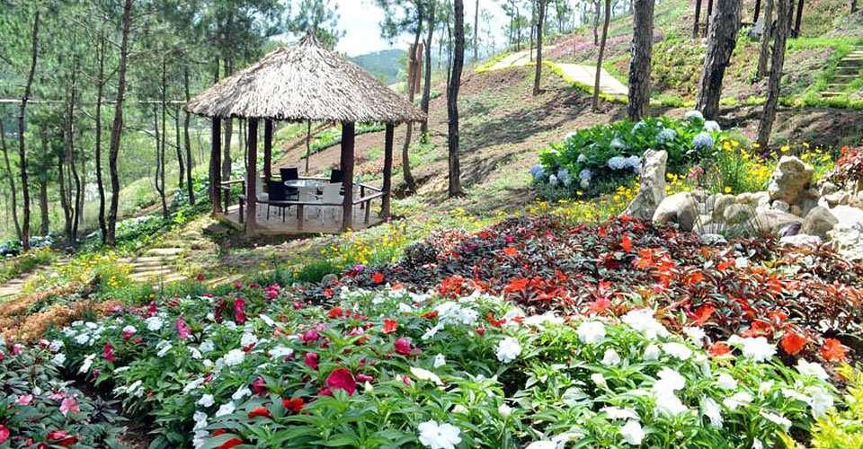 Rừng hoa Đà Lạt khu du lịch thu hút nhiều du khách